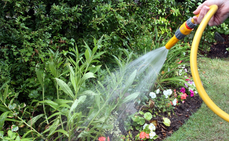 Garden Watering and Maintenance Ashburton